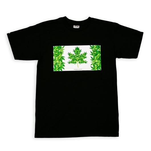 Picture of M39 Tee Black