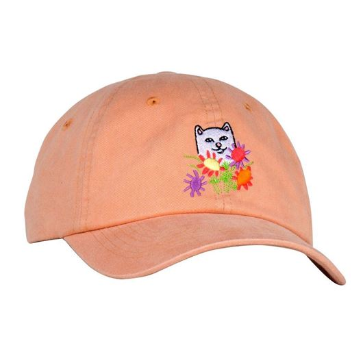 Picture of Flowers For Bae Dad Hat Orange