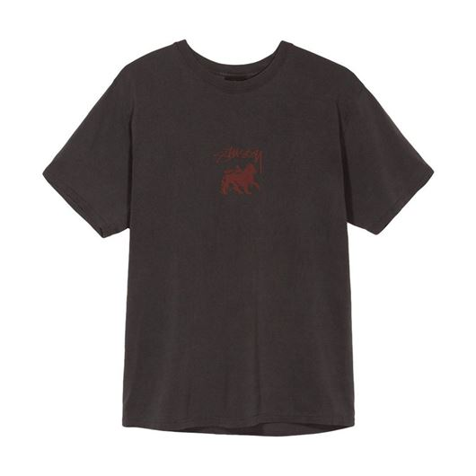 Picture of STOCK LION PIG. DYED TEE Black