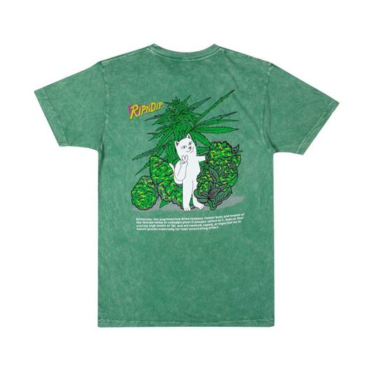 Picture of Purple Haze  Tee Green Vintage Wash