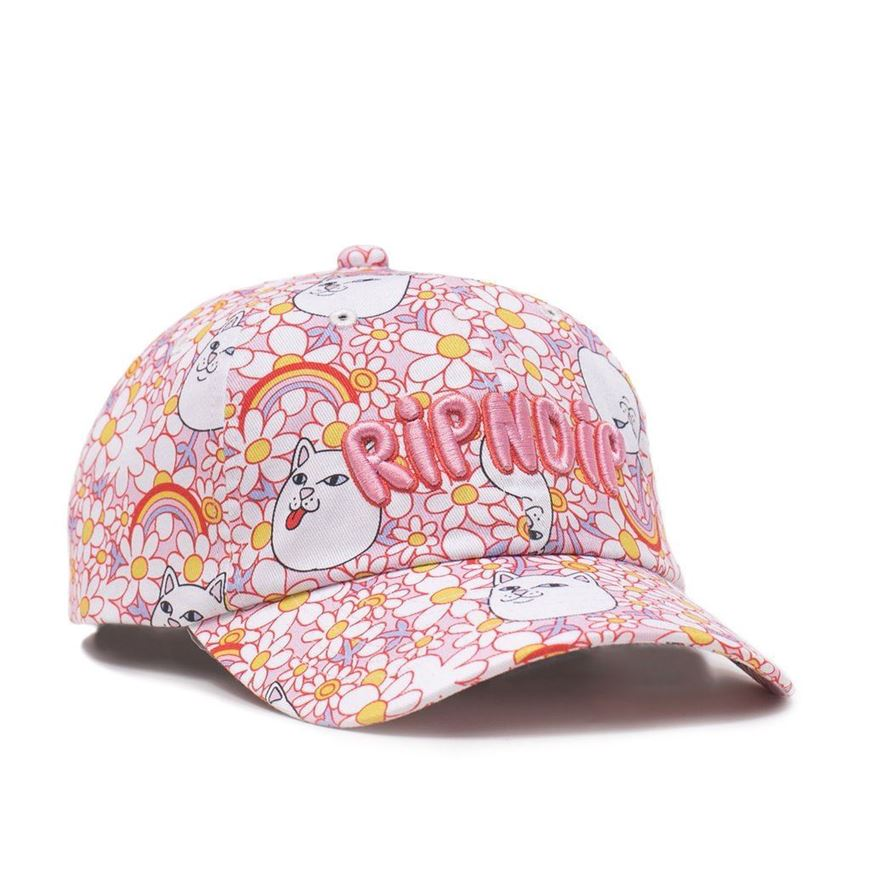 Picture of Daisy Daze Dad Hat  Multi