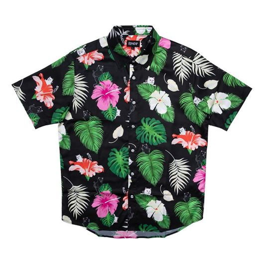 Picture of Maui Nerm Button Up Black